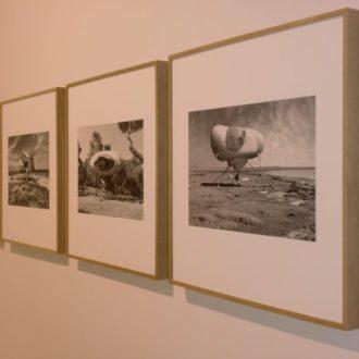 exhibition-749444_1920