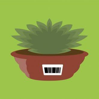 Etiquetas para vasos de flores e plantas